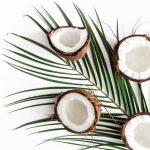 Coconut Vetiver